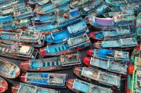 KOMODITAS HASIL LAUT : Nelayan Pantura Diuntungkan