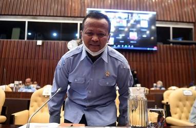 Gerindra Dalam Pusaran Ekspor Benih Lobster, Edhy: Silakan Audit