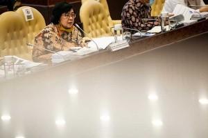 Siti Nurbaya Raker Dengan DPR Membahas Progam Stategis Yang Terdampak Covid-19