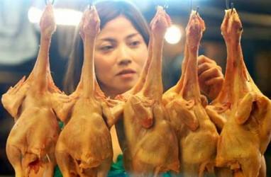 Jelang Iduladha, Mataram Datangkan 100 Ton Daging Ayam Beku