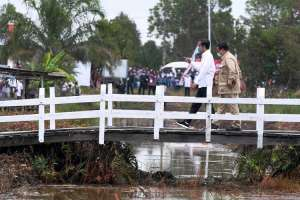 Presiden Joko Widodo Tinjau Lahan Untuk Lumbung Pangan di Kalimatan Tengah