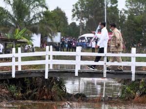 Presiden Joko Widodo Bersama Menhan Prabowo Tinjau Lahan Untuk Lumbung Pangan