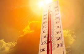 Suhu Global Diprediksi Naik 1,5 Derajat Celcius per Tahun
