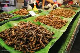 Mungkinkah Serangga Jadi Tren Kuliner Masa Depan?