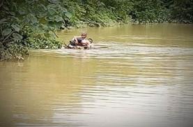 Terobos Banjir, Penyuluh Pertanian Gunakan Batang…