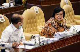 Menteri LHK: Yakinkan Kerja Lapangan Aktivitas Transisi Adaptasi