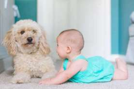 6 Cara Mendukung Bayi Anda Merangkak