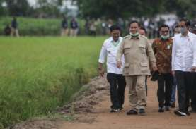 Polemik Anggaran Jumbo Kementerian Prabowo