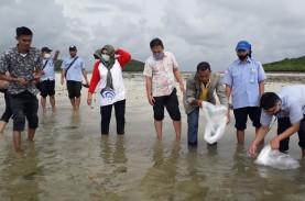 Tahun ini Batam Sebarkan 754.000 Benih Ikan untuk…