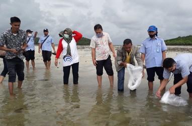 Tahun ini Batam Sebarkan 754.000 Benih Ikan untuk Nelayan