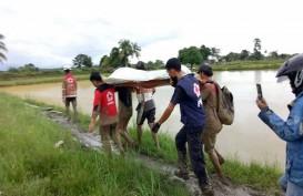 Laporan Sementara BPBD, 10 Korban Banjir Luwu Utara Meninggal