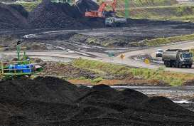 UU Minerba Berlaku, Kementerian ESDM Optimistis Reklamasi Bekas Tambang Berjalan