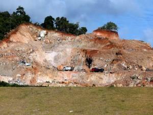 Hutan di Aceh Rusak Akibat Banyaknya Pembukaan Lahan Perkebunan