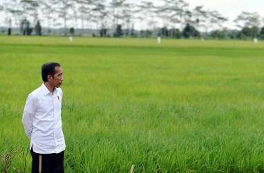 Indonesia Dihadapkan Tantangan Agrikultur dan Ketahanan Pangan