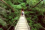 Tahura Juanda Mulai Beroperasi, Ini Kisah Mistis dan Sedih Goa Jepang