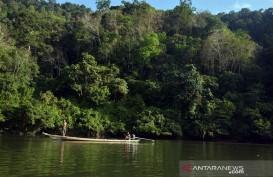 Riau Usul Bukit Rimbang Bukit Baling Menjadi Taman Nasional