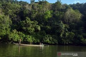 Riau Usul Bukit Rimbang Bukit Baling Menjadi Taman…
