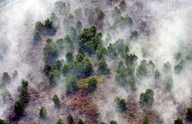 Asap Kebakaran Hutan tak akan Sebarkan Virus Covid-19