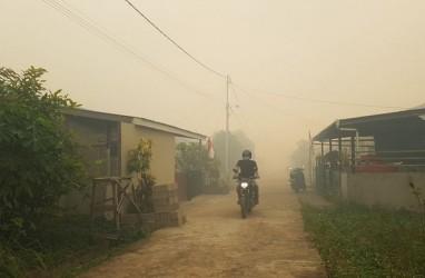 BPBD Kubu Raya Siap Tangani Kebakaran Hutan dan Lahan