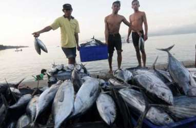 KKP Sebut Konsistensi Jaga Mutu Dongkrak Ekspor Ikan ke China
