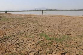 Musim Kemarau Sudah Menjangkau 64 Persen Wilayah Indonesia
