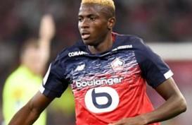 80 Juta Euro, Victor Osimhen Sudah Sangat Dekat dengan Napoli