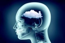 Sulit Bernapas Hingga Kabut Otak Jadi Efek Jangka…