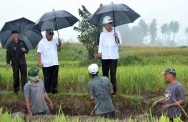 Kepala BKF: Pemerintah Segera Luncurkan Padat Karya Tunai