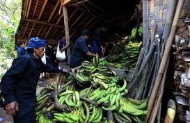 Kemenparekraf Dukung Pembatasan Wisatawan ke Desa Suku Baduy