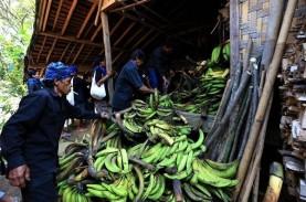 Kemenparekraf Dukung Pembatasan Wisatawan ke Desa…