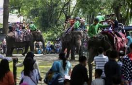 Kapasitas Pengunjung Kebun Binatang Dibuka Bertahap