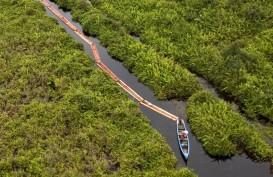 Illegal Logging: Tebang Kayu Gelam Tiga Warga Sumsel Ditangkap
