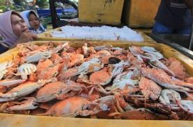 Lampung Giatkan Restocking Ikan-ikan Endemik di Sungai…