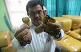 Antisipasi Penyebaran Covid-19, Vietnam Larang Perdagangan Satwa Liar