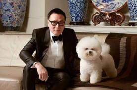 Melihat Ketelatenan Harry Su Merawat Anjing Juara…
