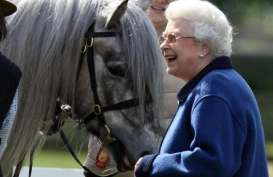 Aneka Hewan Peliharaan Milik Ratu Elizabeth II