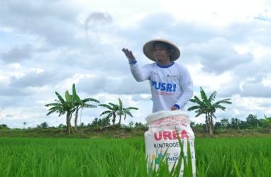 PAKTANI DIGITAL  : Mempermudah Petani Bertemu Pembeli