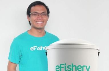 Kisah Sukses Gibran, Kembangkan eFishery Bisnis Pakan Berbasis Teknologi