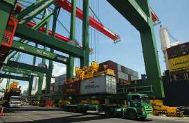 AKTIVITAS PELABUHAN : Arus Logistik Domestik Jadi Tumpuan