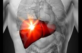 Masalah Kehalalan Vaksin Masih Jadi Persoalan Pencegahan Hepatitis