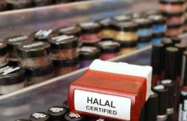 Pengembangan Ekosistem Produk Halal, 4 Sektor Ini Didorong