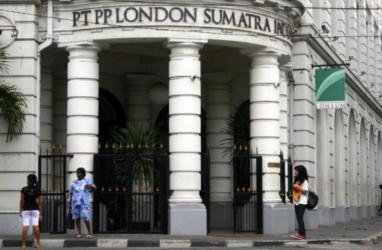 Laba London Sumatra (LSIP) Meroket 778 Persen