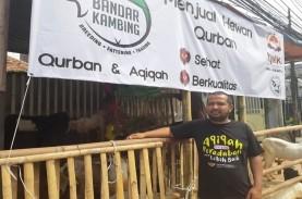 Gegara Corona, Pedagang Hewan Kurban Langganan Artis…