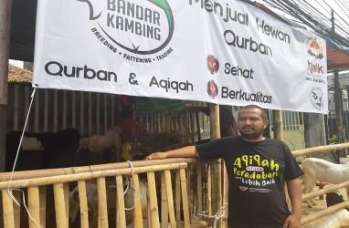 Gegara Corona, Pedagang Hewan Kurban Langganan Artis dan Pejabat Banting Harga Supaya Tak Rugi