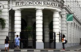 Volume Penjualan London Sumatra (LSIP) Turun 15,7 Persen