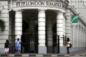 Volume Penjualan London Sumatra (LSIP) Turun 15,7…