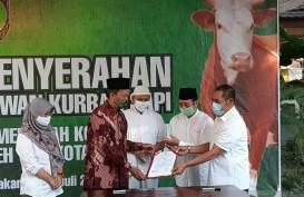 Sembuh dari Covid-19, Wakil Wali Kota Solo Serahkan Sapi dari Jokowi