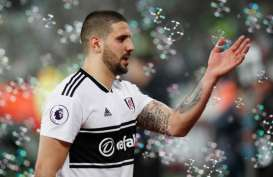 Play-off Promosi Liga Inggris, Fulham Berharap Mitrovic Main