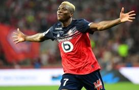 Osimhen Resmi ke Napoli dari Lille, Jadi Pemain Afrika Termahal