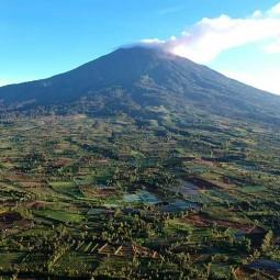 Hutan di Gunung Kerinci Beralih Fungsi Menjadi Lahan Perkebunan